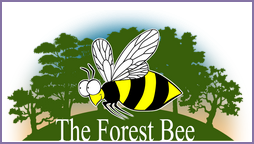 forestbee-logo-1