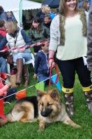 dog show 2 2015