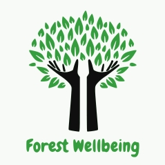 Forest wellbeing 4